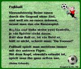 fussball-gbpic-8